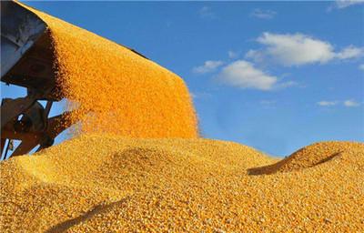 农副产品质押